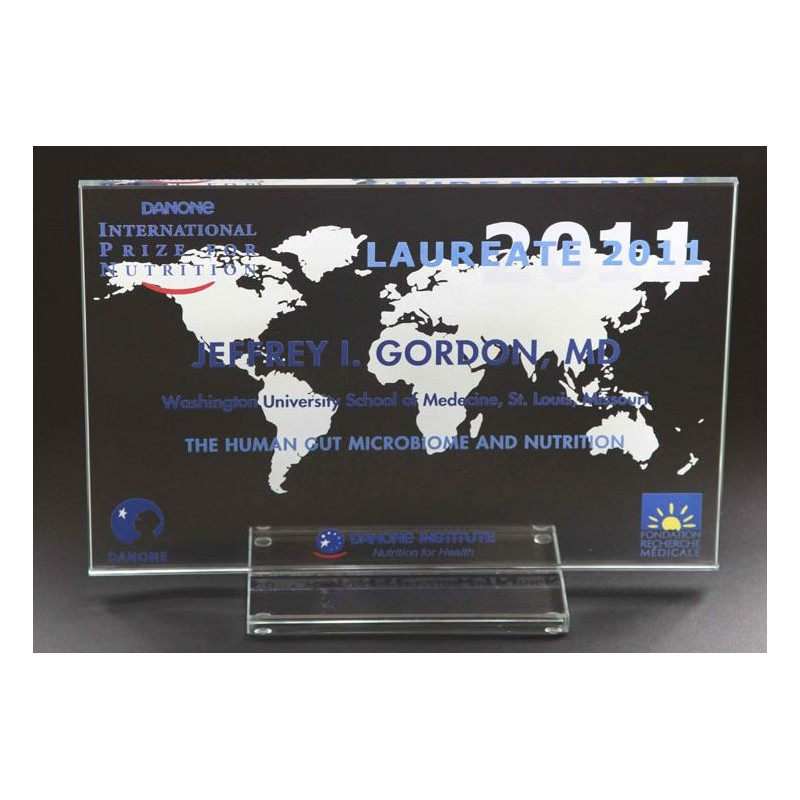Trophée en verre entièrement personnalisable - Trophée et médaille personnalisé