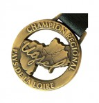 pin-s-medaille-2d copie